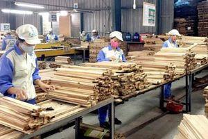 Doanh nghiệp gỗ có thể giảm 70% công suất vì Covid-19