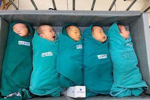 Năm em bé chào đời trong 'bệnh viện cách ly' ở Thủ đô
