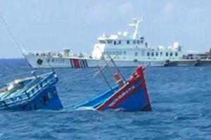 Mỹ bày tỏ quan ngại vụ tàu Trung Quốc đâm chìm tàu cá Việt Nam ở Hoàng Sa