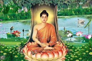 Ngẫm về 'định luật vô thường' của đức Phật Thích Ca Mâu Ni