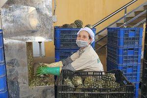 Doanh nghiệp khẩn trương sản xuất trong bối cảnh đại dịch
