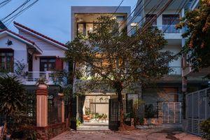 Ngôi nhà thiết kế bậc thang độc đáo tại Quy Nhơn