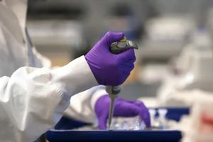 COVID-19: Chưa tìm ra vaccine, chưa thể chấm dứt phong tỏa