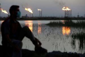 OPEC đạt thỏa thuận cắt giảm, giá dầu vẫn rớt mạnh