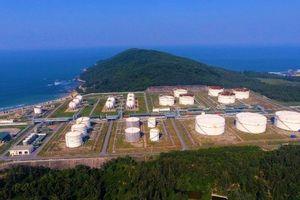 PVN kiến nghị Chính phủ không nhập khẩu xăng dầu để cứu hai nhà máy trong nước