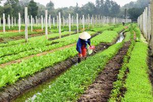 Điền Lộc xây dựng nông thôn mới nâng cao