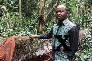 Một CEO tại Nigeria lừa doanh nghiệp Việt 86.000 USD