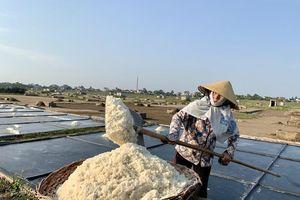Hạt muối nhọc nhằn của diêm dân ngày nắng đỉnh điểm