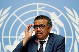 194 nước tại WHO nhất trí nghị quyết điều tra độc lập dịch Covid-19