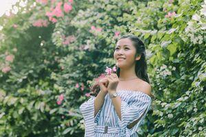 Hà Nội đẹp bởi những giàn hoa giấy sớm nở trong nắng Hè