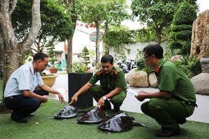 Kiên Giang vận động người dân thả 3 cá thể rùa biển về biển