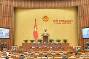 Quốc hội xem xét miễn giảm thuế sử dụng đất nông nghiệp