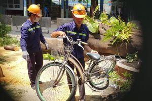 18 học sinh gặp nạn khi cây phượng bật gốc ở sân trường