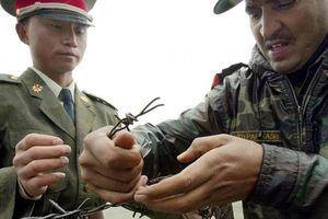 Ấn Độ và Trung Quốc tăng cường quân đội ở biên giới