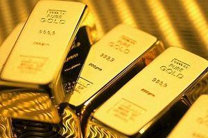 Giá vàng hôm nay: Vàng trong nước và thế giới cùng đảo chiều giảm giá