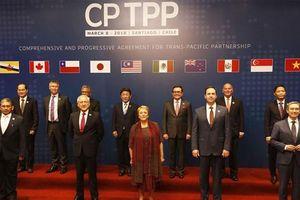 Việt Nam bình luận về việc Thái Lan cân nhắc gia nhập CPTPP
