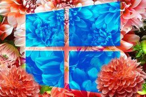 Những điểm nổi bật trong bản cập nhật mới của Windows 10