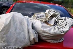 Nhặt 2 túi rác giữa đường, không ngờ vớ được đống tiền 23 tỷ