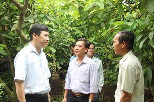 Phó Chủ tịch UBND tỉnh Đồng Tháp Phạm Thiện Nghĩa làm việc tại huyện Lai Vung