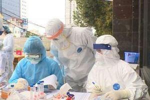 Tròn 44 ngày Việt Nam không có ca mắc COVID-19 trong cộng đồng