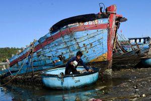 Tàu cá tiền tỷ mục nát ở cảng Sa Huỳnh