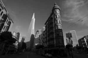 Cận cảnh San Francisco những ngày im ắng giữa 'bão' COVID-19