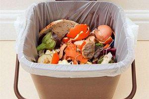 'Rẻ như cho mà nhanh như gió': Chỉ cần đổ giấm lên mẩu bánh mỳ vứt đi, thùng rác hôi đến mấy cũng hết