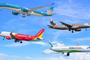Hàng không luôn sẵn sàng mở lại đường bay quốc tế sau đại dịch