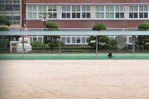 Hàn Quốc: Kêu gọi hoãn mở lại trường học