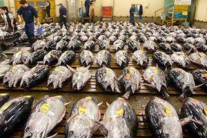 Philippines muốn WB hỗ trợ phát triển ngành thủy hải sản