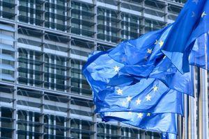 Những điều cần biết về EVFTA: Cam kết xóa bỏ thuế nhập khẩu của EU