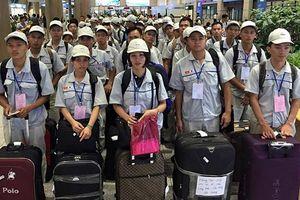 Triển khai đưa lao động đi làm việc ở nước ngoài trong tình hình mới