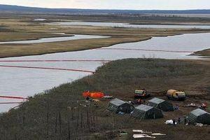 Loạt ảnh sự cố tràn hơn 20.000 tấn dầu tại nhà máy nhiệt điện của Nga