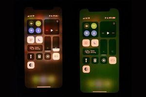 iPhone 11 dính lỗi lạ, màn hình chuyển màu xanh