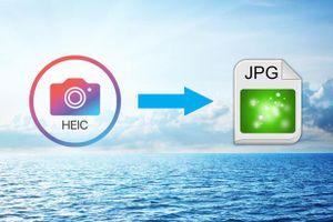 Cách chuyển định dạng ảnh HEIC sang JPEG trên iPhone, Windows và máy Mac