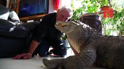 Người đàn ông nuôi cá sấu, rắn chuông, nhện độc trong nhà như thú cưng