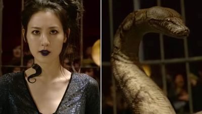 Loạt chi tiết gợi mở từ trailer cuối của 'Fantastic Beasts 2'