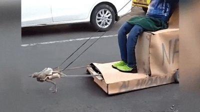 Dân tình tò mò khi 'siêu xe' xuất hiện trên đường phố