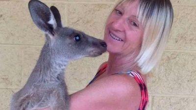 Người chăm thú hoang bị kangaroo tấn công