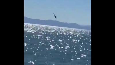 Rợn người khoảnh khắc trực thăng Mi-17 mất lái, đâm đầu xuống biển