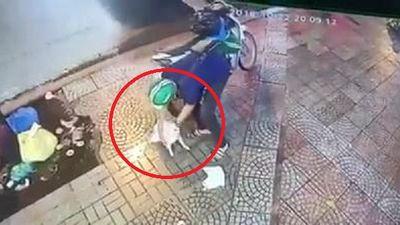 Clip: Truy tìm nam thanh niên đội mũ Grabbike trộm chó ở TP.HCM
