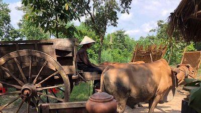 HTV3 làm mới loạt phim cổ tích Việt Nam 'Rồng rắn lên mây'