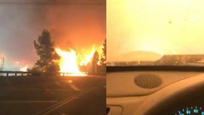 Clip cô gái vừa khóc vừa lái ô tô vượt bão lửa ở California và cái kết thót tim
