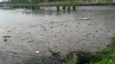 Đà Nẵng: Dân kêu trời vì kênh, hồ điều tiết gây ô nhiễm triền miên