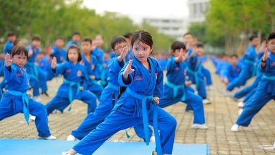 Xem 7 nghìn học sinh, sinh viên cùng thể hiện khả năng võ thuật