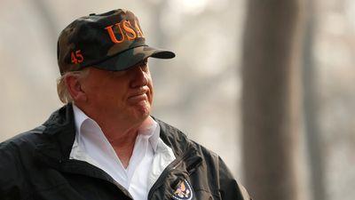 Nói Phần Lan giỏi dọn lá chống cháy rừng, ông Trump lại gây cười