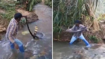 Người đàn ông tay không bắt rắn hổ mang chúa dài 5m dưới suối