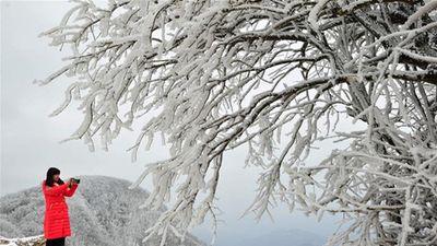 Hình ảnh Trung Quốc 'đóng băng' trong mùa đông lạnh giá