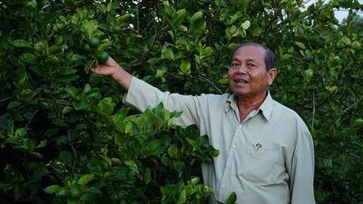 Hậu Giang xác định 10 loại nông sản mũi nhọn