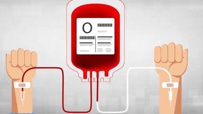 Khan hiếm nhóm máu phổ biến nhất Việt Nam